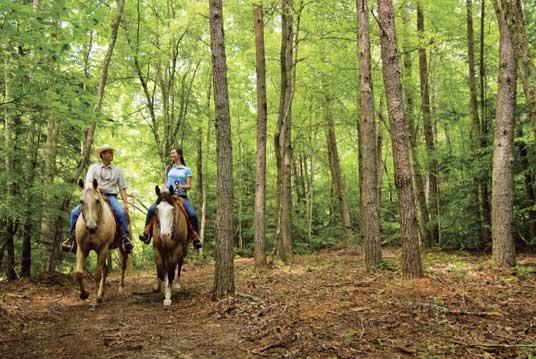 30+ miles of horseback riding trails.jpg